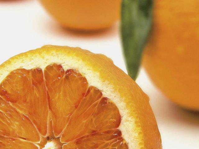 Orange Domus